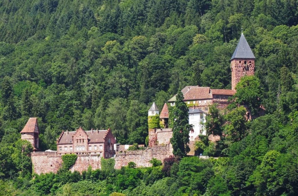Spielort über dem Neckartal: Schloss und Burganlage Zwingenberg<br<Foto: Birgit Bernds